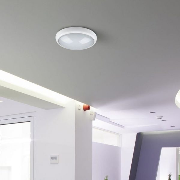 12W LED Bulkhead Light Fitting Oval Round IP54