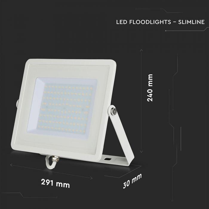 100W Floodlight