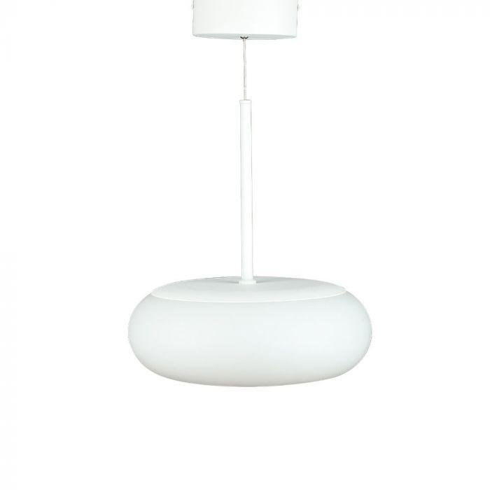 25W LED DESIGNER HANGING PENDANT LIGHT