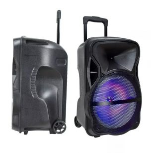 35W Rechargeable Trolley Speaker with Wired Microphone-RF-RGB (12inch)