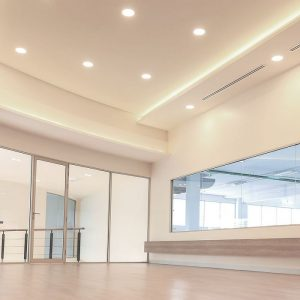 40W LED Reflector COB Downlight (120 Lm/W)